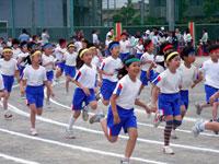 20060603.jpg