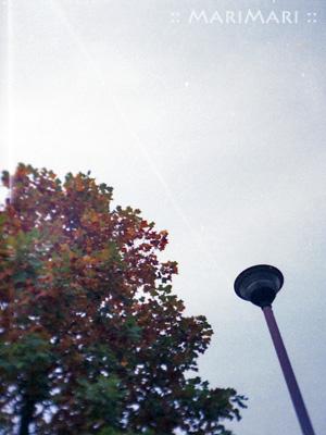 20071127.jpg